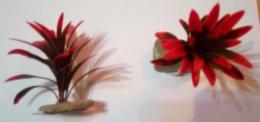 Plastova rostlina na kameni  vel.0 Èervena