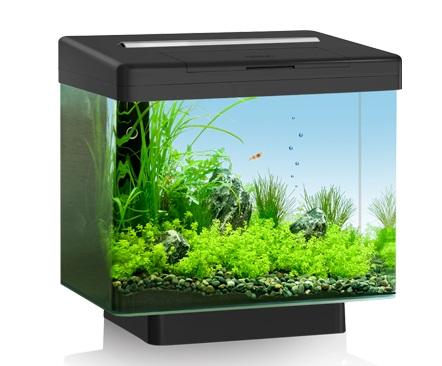 JUWEL®Aquarium GmbH amp; Co KG akvárium objemu 30 l